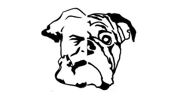 Continental Bulldog Züchter - MarXBulls